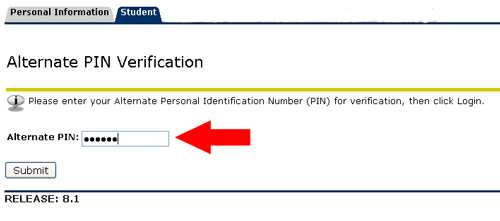 Alternate PIN verification screen